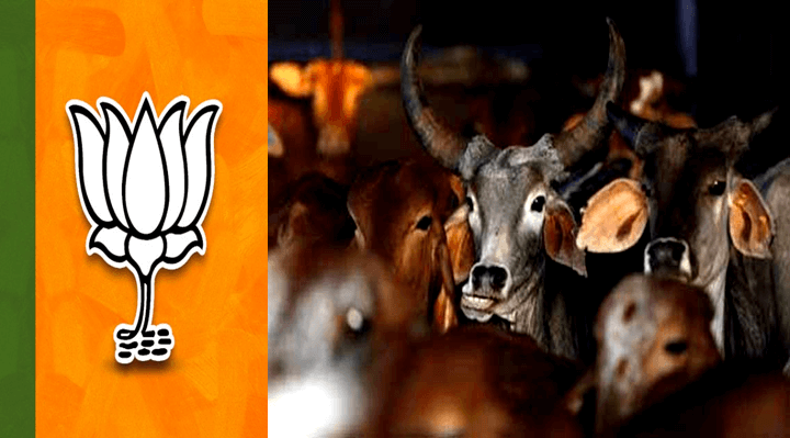 A Big tightness for BJP After Beef Ban in Meghalay, 5000 BJP Members Resign